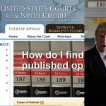 (L-R) A screenshot of the US Court of Appeals for the Ninth Circuit website and US President Donald J Trump. Photo: UNI