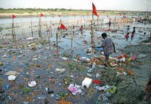 The Yamuna in Delhi is a sorry sight. Photo: Anil Shakya