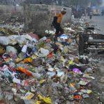 A garbage dump in New Delhi. Photo: Anil Shakya