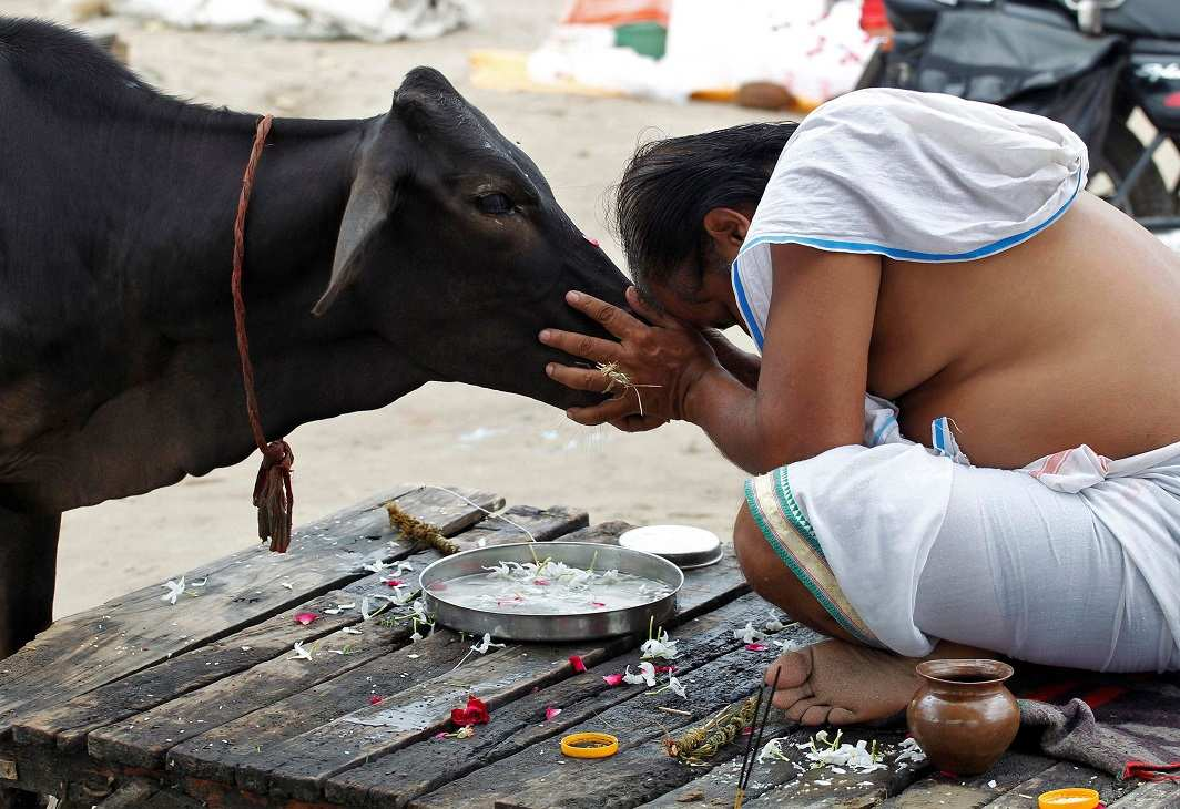 The controversy comes up during Navratri when Hindus abstain from eating meat and sales fall by 75 percent. Photo: UNI