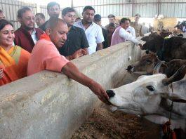 Uttar Pradesh Chief Minister Yogi Adityanath at Kanha Upvan in Lucknow. Photo: UNI