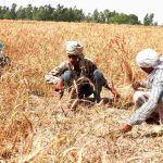 Farmer loan waiver: New insurance and loan schemes revealed by ASG.