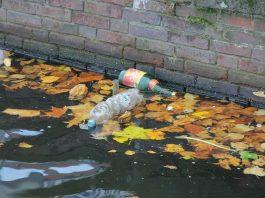 NGT grants reprieve to polluting industries in Rajasthan