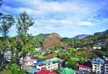 Hotels and housing projects are killing the beauty of the lush green hills of Munnar