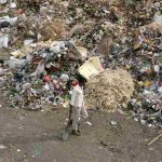 Delhi HC spells out roadmap for garbage clearance