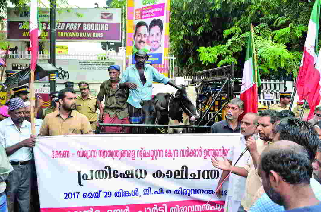 A symbolic cattle market organised in Thiruvananthapuram to protest against the cow slaughter rules. Photo: UNI