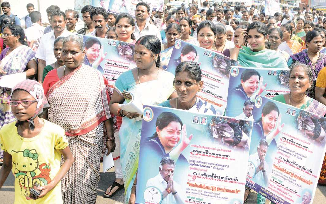 Bypolls for the RK Nagar seat, which fell vacant after Jayalalithaa's death, saw bitter fights between the Panneerselvam and Sasikala factions. Photo: UNI