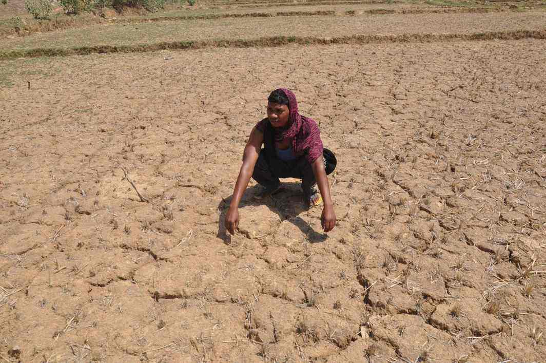 Farmer suicides: AG admits to ground level problems in implementation