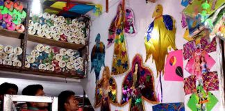 NGT bans manjha for kite-flying