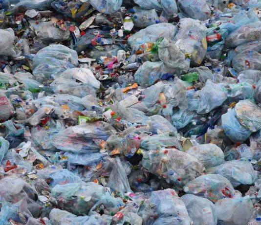 NGT bans manufacture and storage of polybags in New Delhi