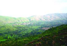 The Aravallis serve as aquifers and host biodiversity too. Photo: Kh Manglembi Devi