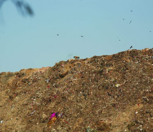 Garbage piled up at Okhla landfill in Delhi. Photo: Anil Shakya