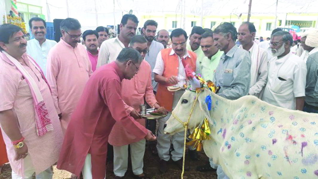 India's first cow sanctuary in Agar, MP, was inaugurated recently