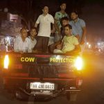 Self-styled cow vigilantes have claimed nearly 30 lives in the past four years of BJP rule/Photo: UNI