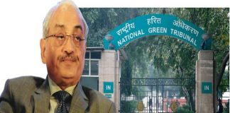 National Green Tribunal reels under severe staff crunch