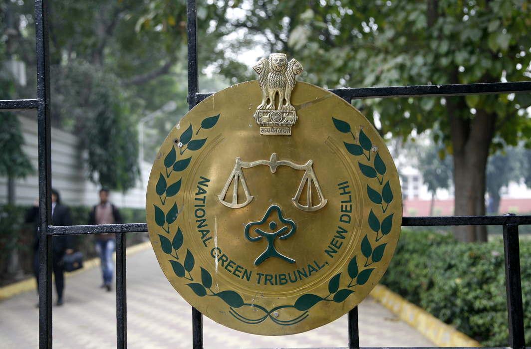 NGT puts Delhi tree felling on hold till July 19