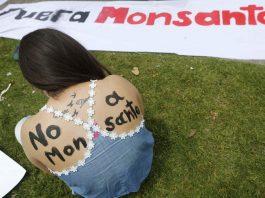 Monsanto-Avaaz Case: Arm-Twisting Tactics