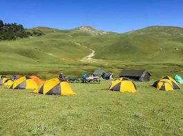 Himalayan Bugyals: The Hills Are Not So Alive…