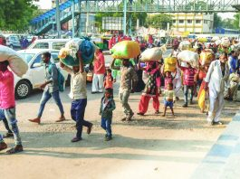 Migrant labourers have been fleeing Gujarat in hordes, using every possible conveyance/Photo: Twitter