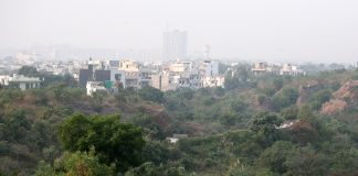 The government plan to denotify acres of land categorised as forests will affect the Aravalis/Photo: Anil Shakya