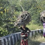 Tribal women carrying firewood from the forest in Patratu area in Ranchi/Photo: UNI