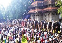 Anayootu (Elephant Feeding) festival in Sri Vadakkum Nadha Temple, in Thrissur/Photo: UNI