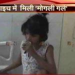 Eight-year-old feral child found in Bahraich