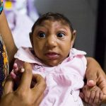 Zika virus: Brazil declares end of public health emergency