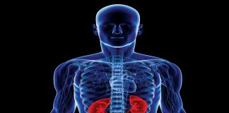 New study suggests kidney disease may be linked to pesticide exposure