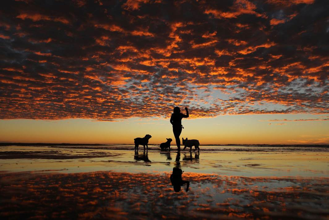 LITTORAL IDYLL: A woman plays with her three dogs on the beach after sunset in Del Mar, California, US, Reuters/UNI