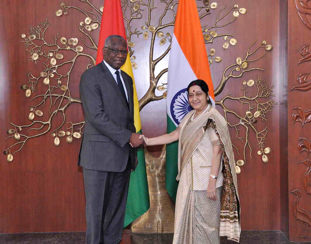 WHO IS THE TALLER? External Affairs Minister Sushma Swaraj meets minister for foreign affairs of Guinea, Mamady Toure, in New Delhi, UNI