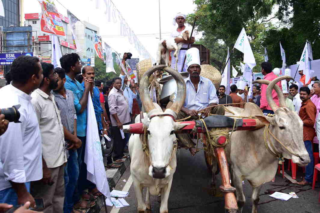 TAKE THE STREETS: Members of all Kerala Cattlers Association staging a protest against 18 percent GST and hike of LPG price, in Thiruvananthapuram, UNI