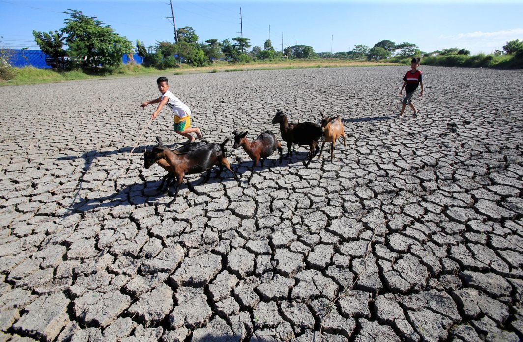 Children escort goats while walking over cracked soil at a dried up rice field in Baliuag town, Bulacan province, north of Manila, Philippines, Reuters/UNI
