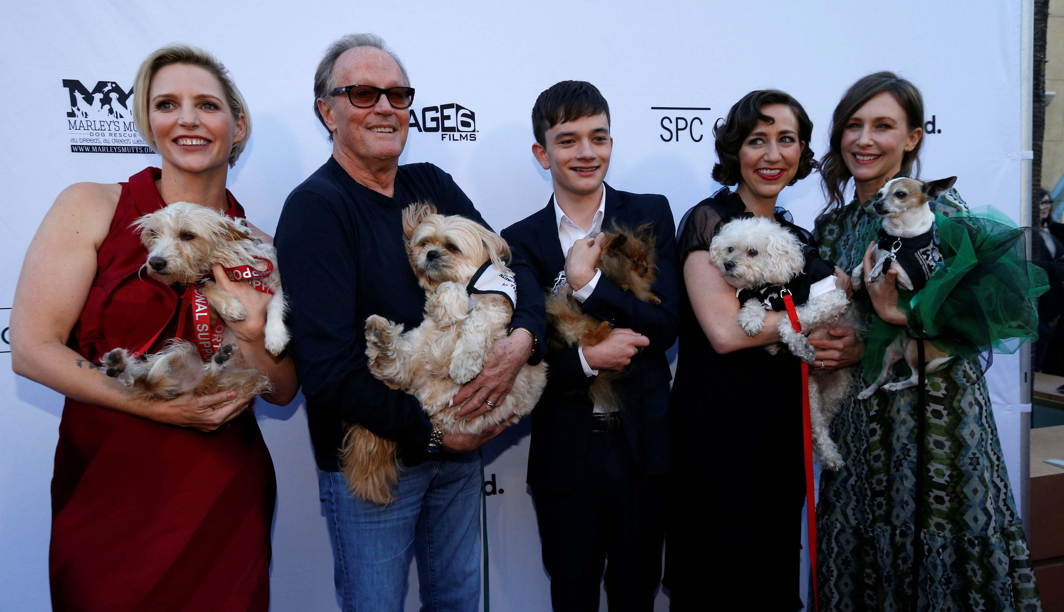 "Director Shana Feste and cast members Peter Fonda, Lewis MacDougall, Kristen Schaal and Vera Farmiga hold mutts as they pose at the premiere for the movie ""Boundaries"" in Los Angeles, California, Reuters/UNI"