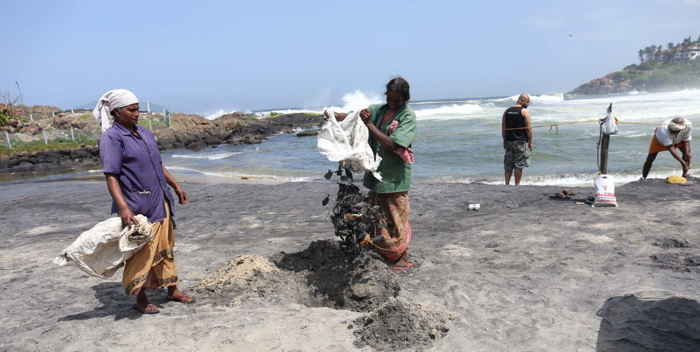 Labourers remove dead fish washed ashore during a cleaning drive at Kovalam Beach, in Thiruvananthapuram, UNI