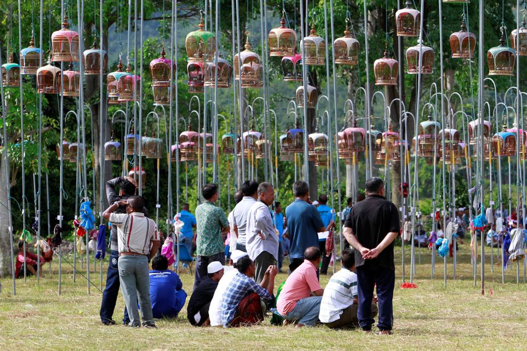 Thai Muslim villagers look at birds in cages taking part in a bird-singing contest in in the southern province of Pattani, Thailand, Reuters/UNI