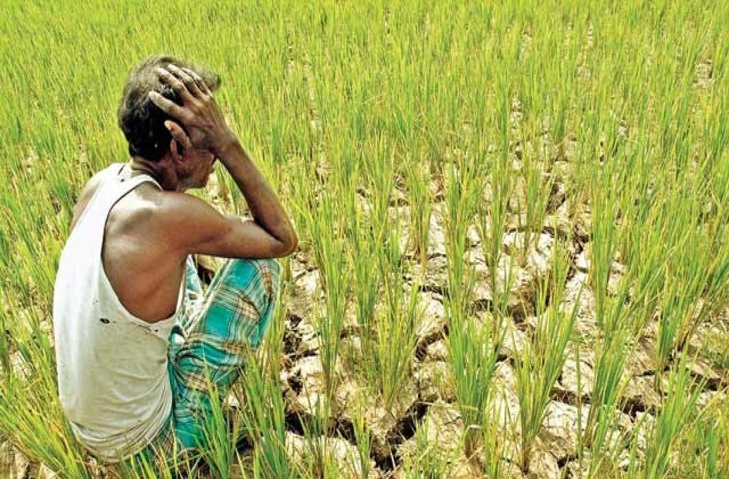 Climate change biggest health threat, cost India 7,500 crore labour hours in 2017