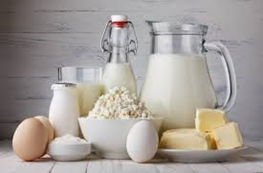 Foods that improve bone health