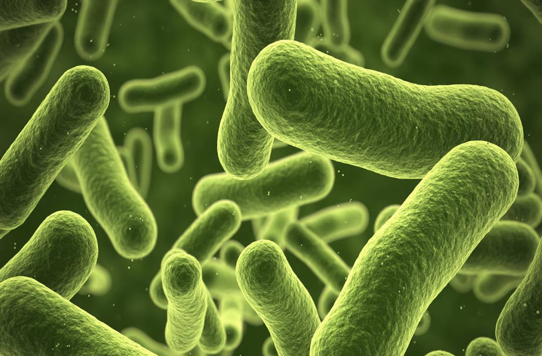 Scientists develop device to detect bacteria within minutes