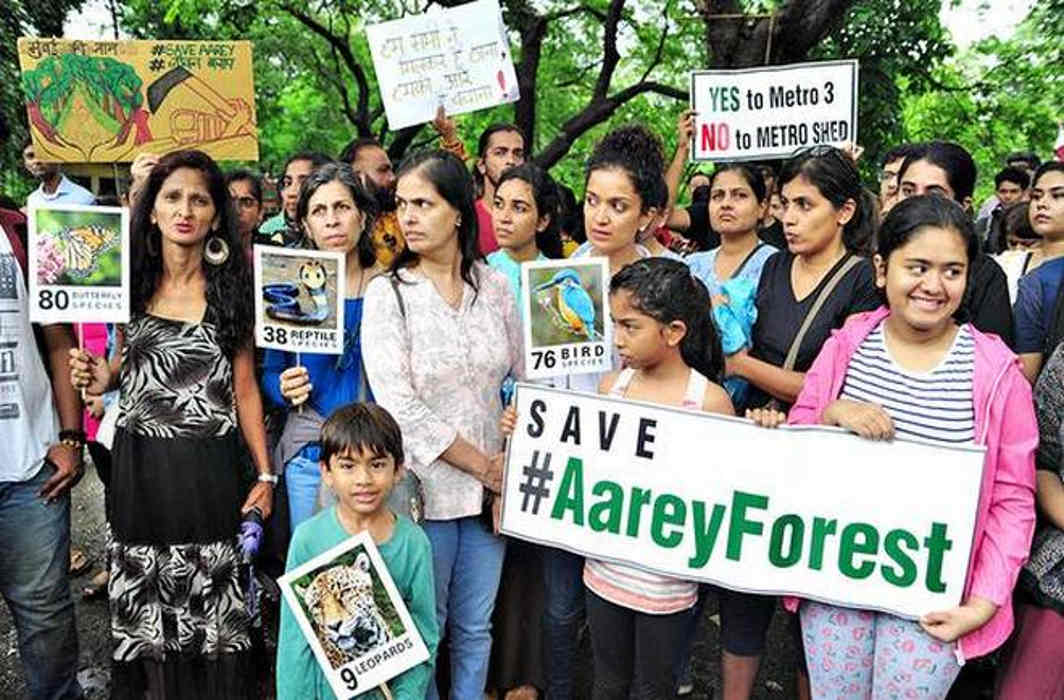 Sunday protests to save Aarey trees continue