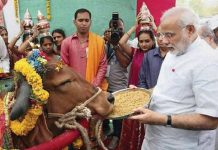 Modi Government's big decision, Purchase of Animals for Slaughterhouses - Restriction on Sale