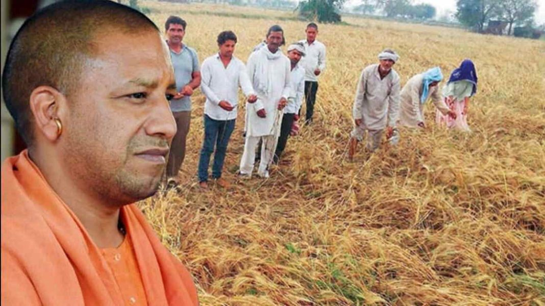 Farmer-movement: Some good initiatives
