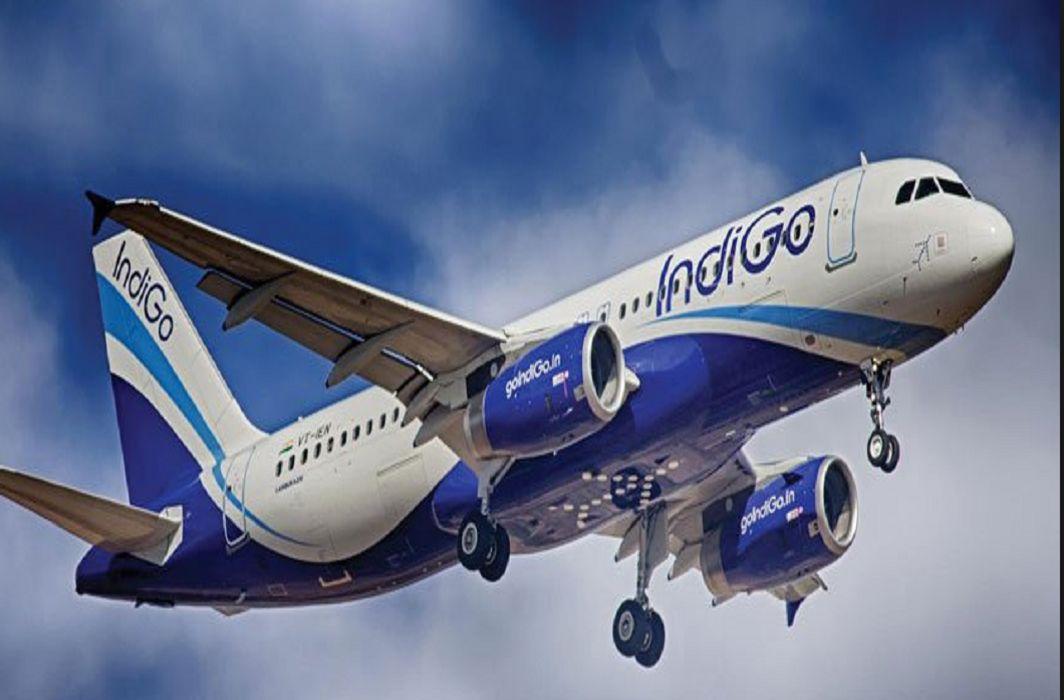 Indigo and Go Air canceled 600 flights