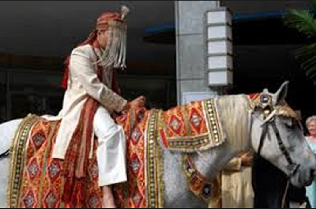 Upper Caste Attack on Dalit Groom for Riding Horse, 7 arrested