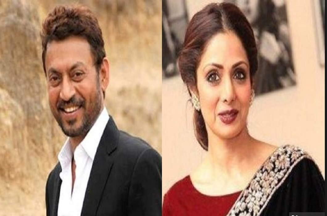 IIFA Awards 2018: Best Actor and Actress Award for Irfan-Sridevi