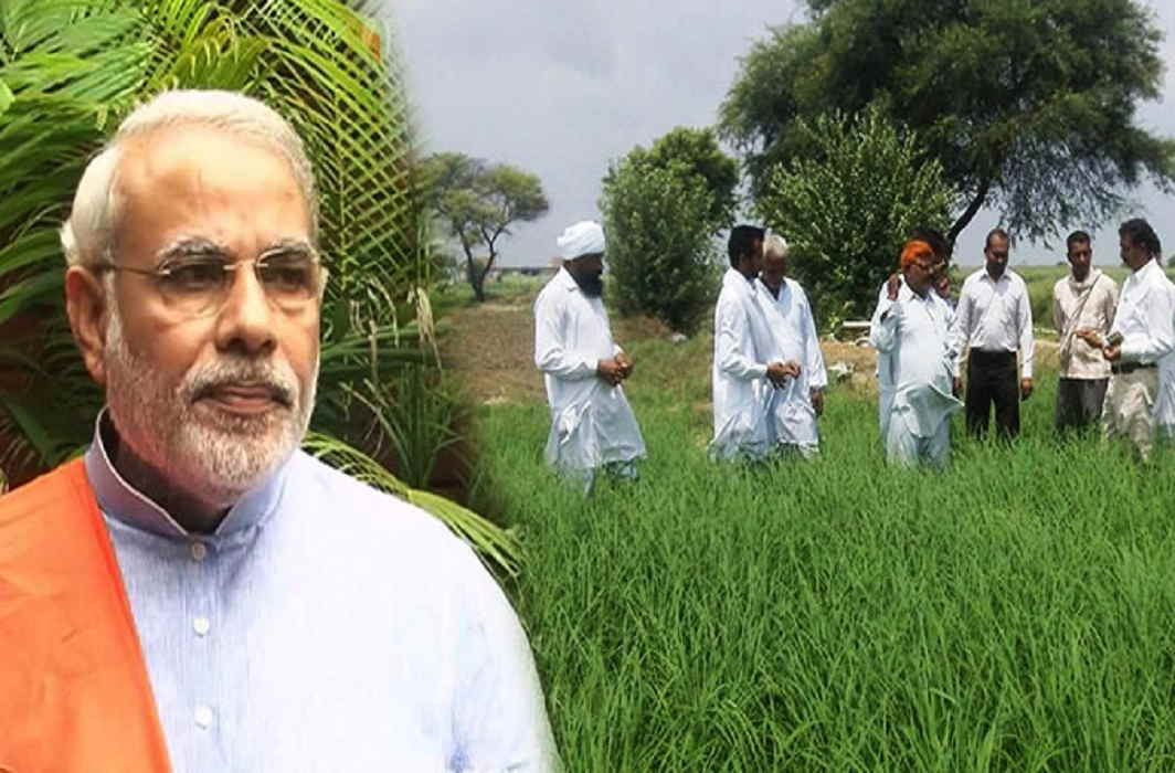 Modi Government's gift to farmers, Cabinet approval for MSP increase for Kharif