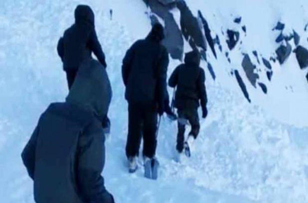 avalanche ladakh