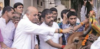 VHP International's working president Pravin Togadia performing Gau puja. Photo: UNI