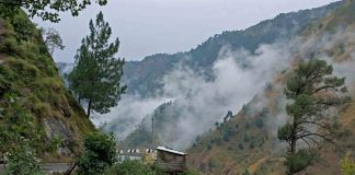 3 Kasauli hotels punished by NGT