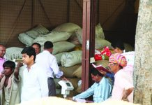 The Udaipur mandi stocked with forest produce